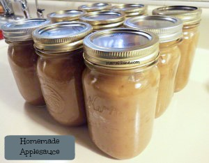 applesauce-11-300x234-text