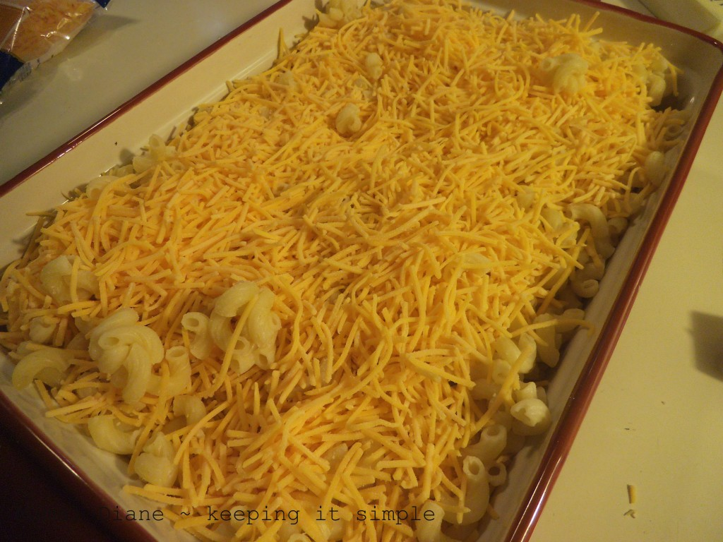 Macaroni and Cheese 013