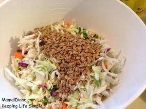 Crunchy Noodle Cole Slaw 016