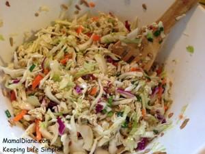 Crunchy Noodle Cole Slaw 018