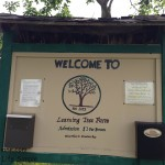 The Learning Tree Farm 179