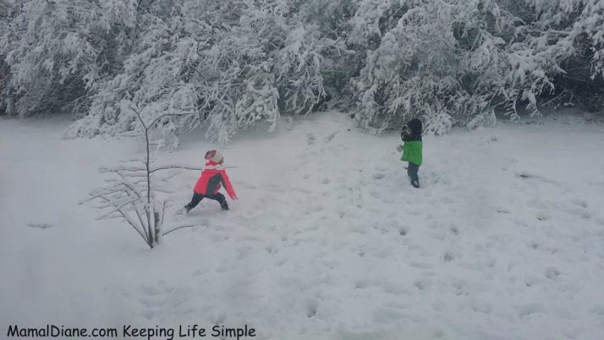 first season snow 2014