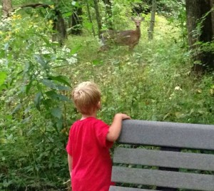 Tyler and Deer at Grant Park