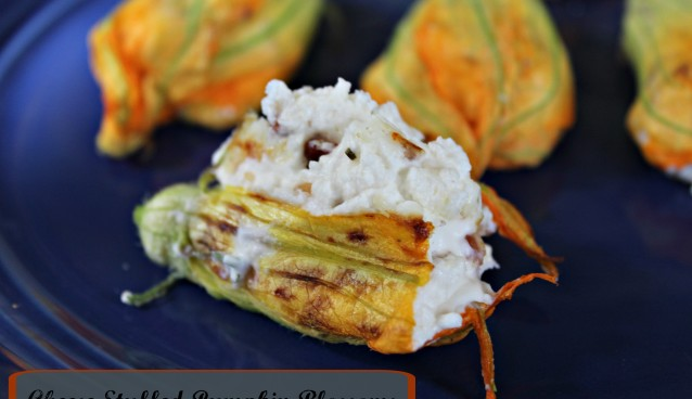 Cheese Stuffed Pumpkin Blossoms 191a