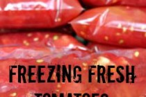 Freezing Fresh Tomatoes 250