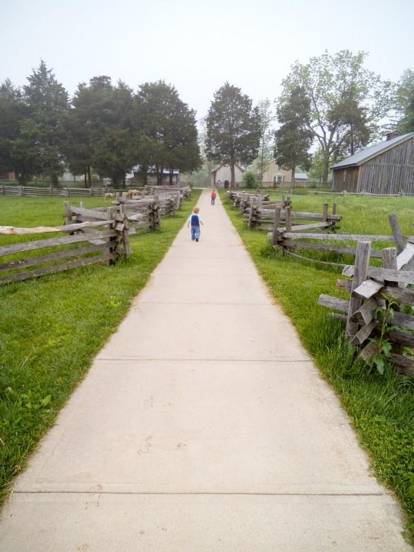 Carriage Hill Farm 030