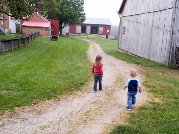 Carriage Hill Farm 043