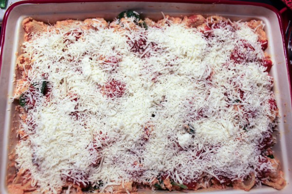 Italian Inspired Meals - Baked Ziti with Seasonal Inspired Veget 038