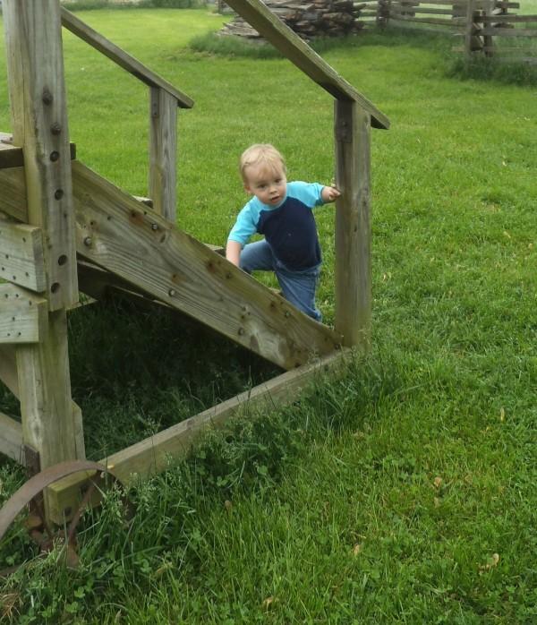 Carriage Hill Farm 047a