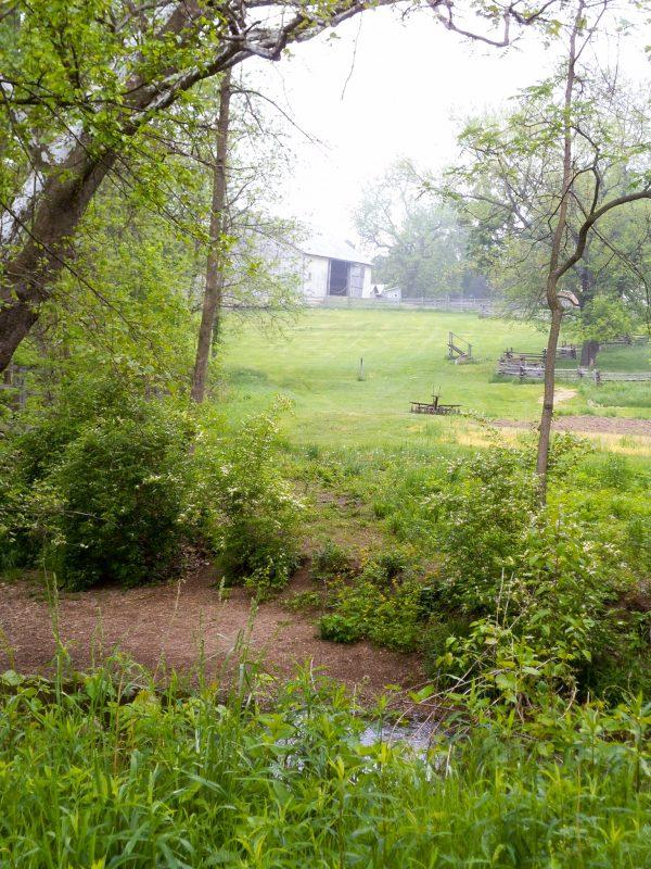 Carriage Hill Farm 057