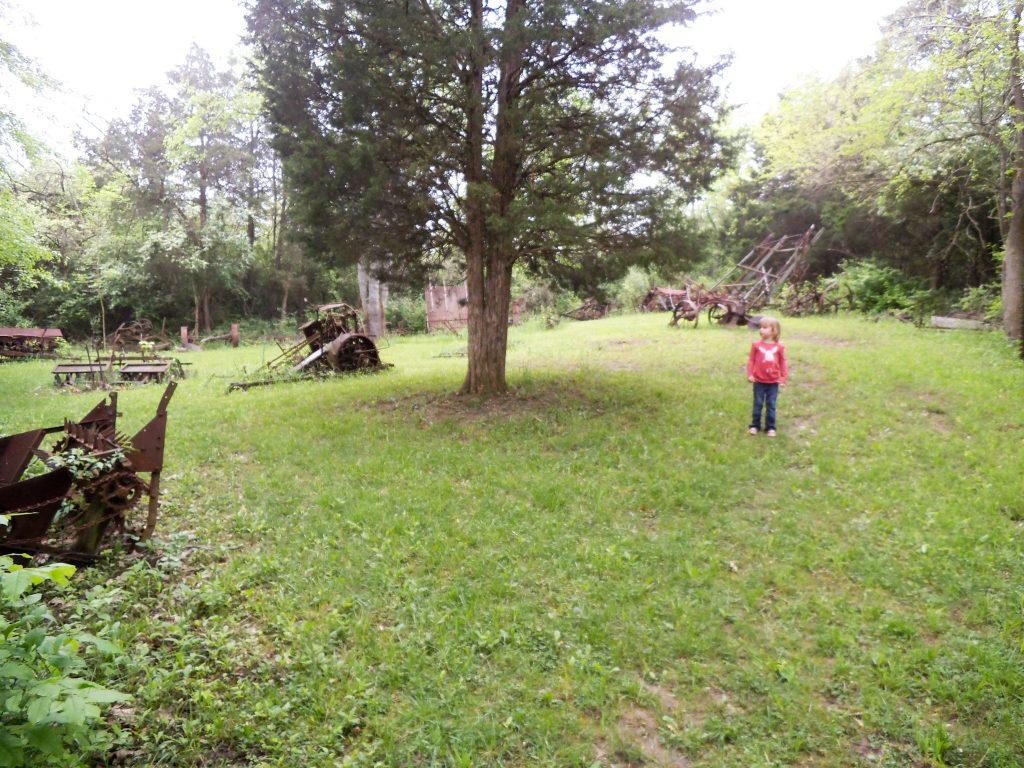 Carriage Hill Farm 086